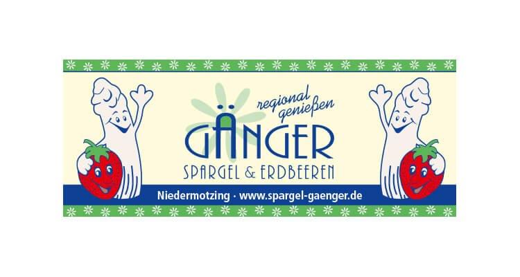 logo-gaenger